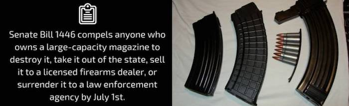 Senate Bill 1446 compels anyone who owns a large-capacity magazine to destroy it, take it out of the state, sell it to a licensed firearms dealer, or surrender it to a law enforcement agency by July 1st.